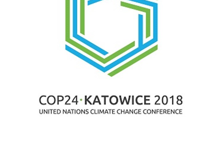 What Really Happened at COP24